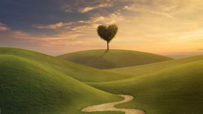 zavita cesta do ljubezni