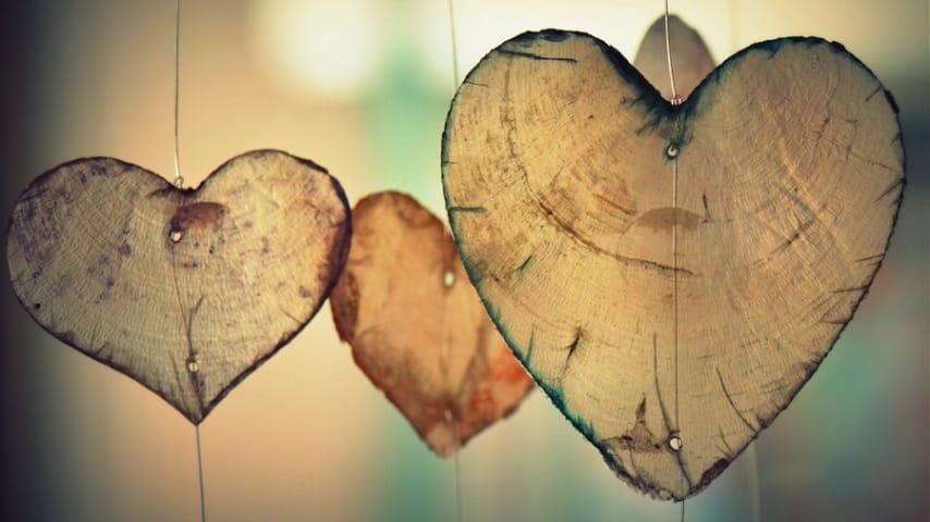Kako vam lahko zakon privlacnosti pomaga manifestirati vas odnos z duso dvojcico-tanja turnsek-min