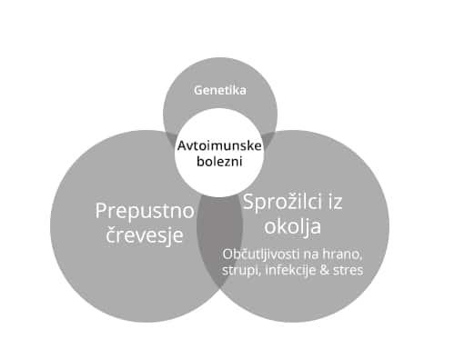 IV-del-8-resnic-o-avtoimunih-boleznih-graf